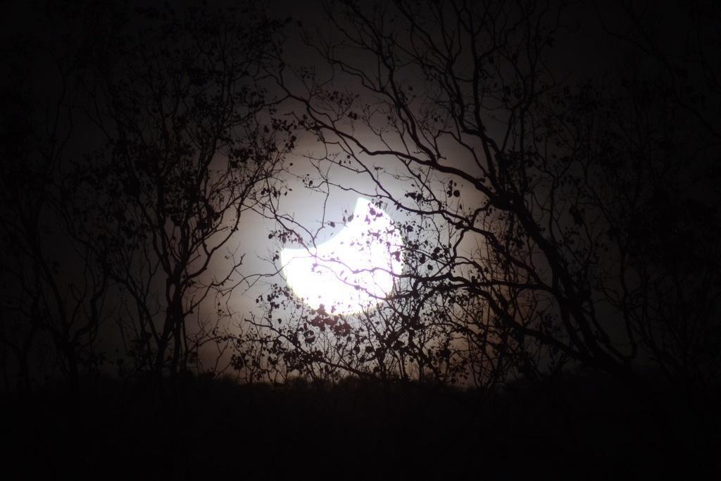 Eclipse over ridge