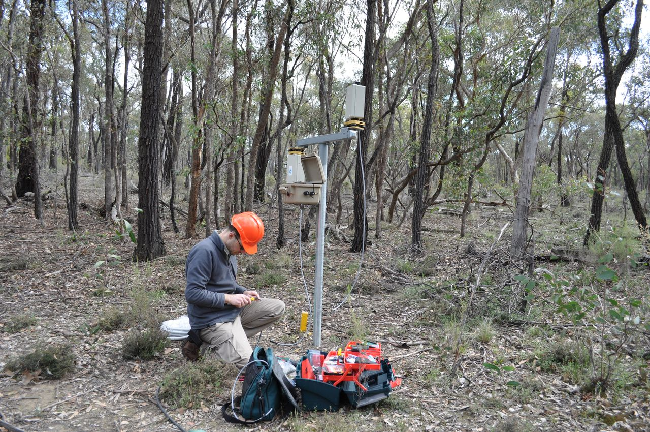 VegNET inventor Dr Darius Culvenor completes the wiring on a new scanner in a forest in Victoria.