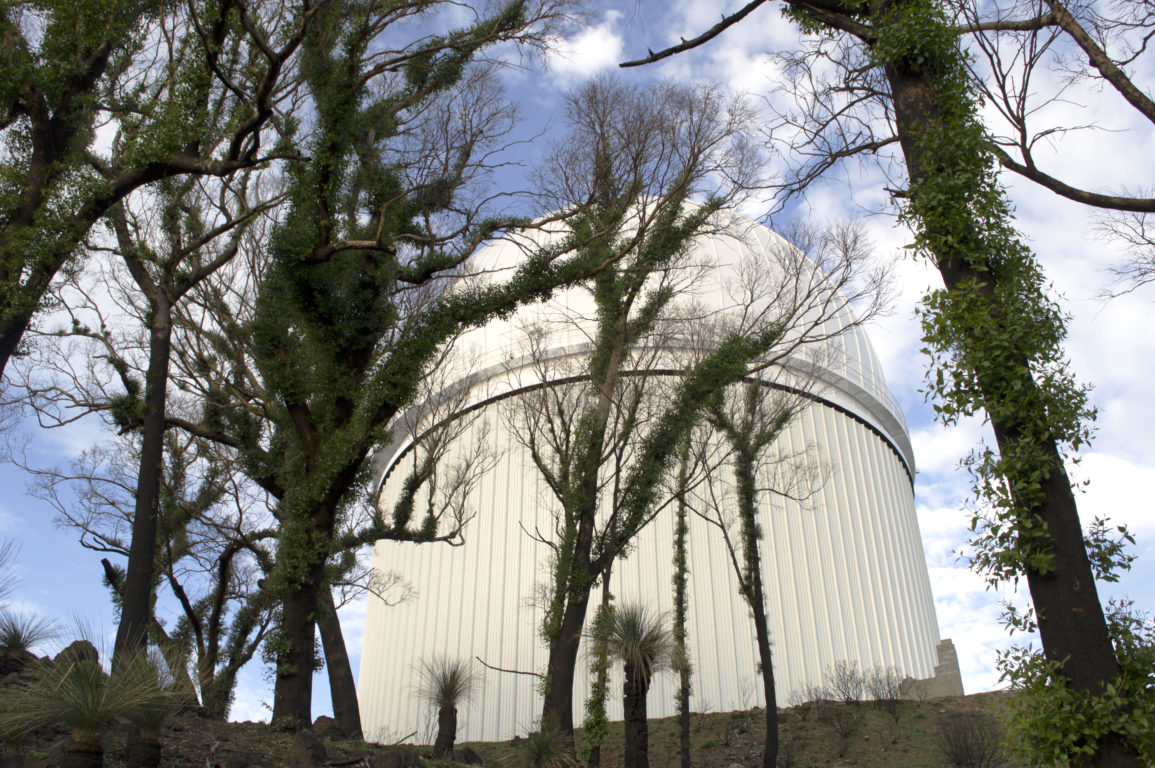 Trees sprouting with new leaves in front of the Anglo-Australian Telescope at Siding Spring Observatory