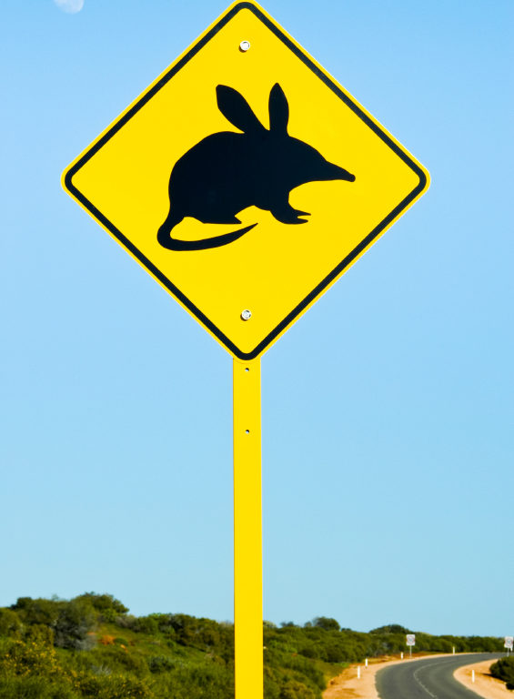 Bilby sign