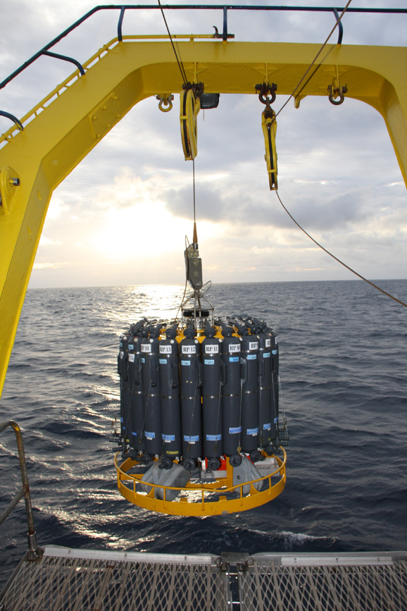 Last but not least – another amazing piece of gear – the conductivity, temperature, depth sensor (CTD) with niskin bottles (water sampling bottles) for collecting water samples. The instrument is lowered to just above the seabed, recording data on salinity, temperature, oxygen levels, and fluorescence (an indicator of phytoplankton presence) all the way.  Niskin bottles are then fired at specified depths on the way up to collect water samples for detailed analysis of hydrocarbons, phytoplankton and nutrients.