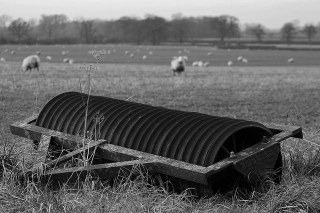 Old farm roller