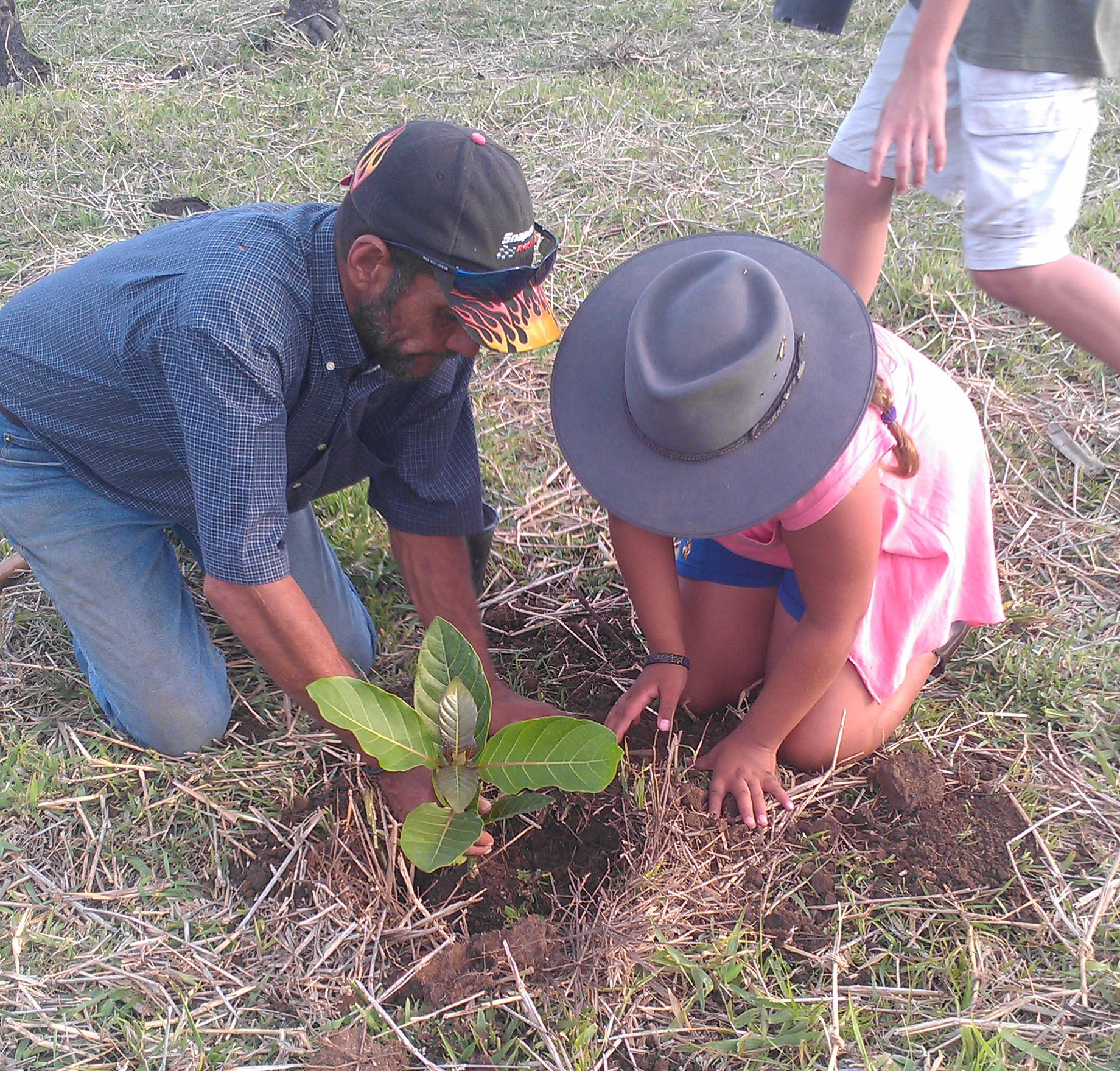 Man and girl planting tree