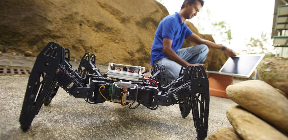 Six-legged hexapod robots can navigate rugged terrain and access places human workers cannot.