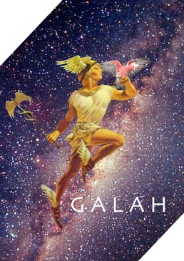 The project logo for GALAH.