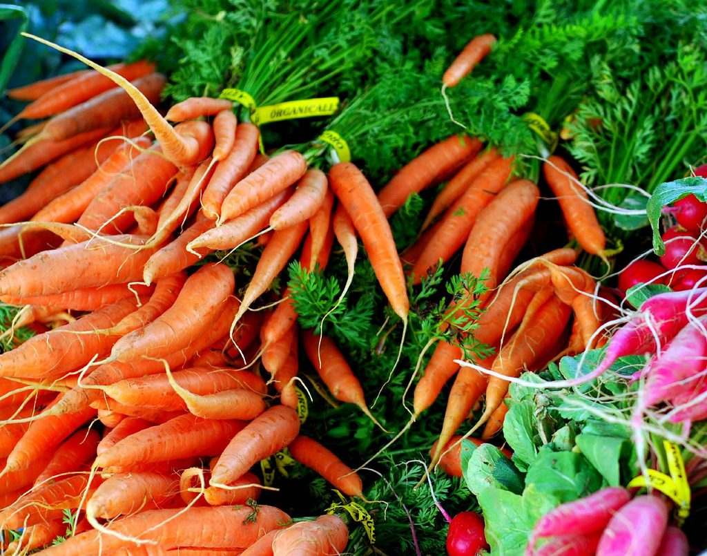 Photo of raw carrots and turnips
