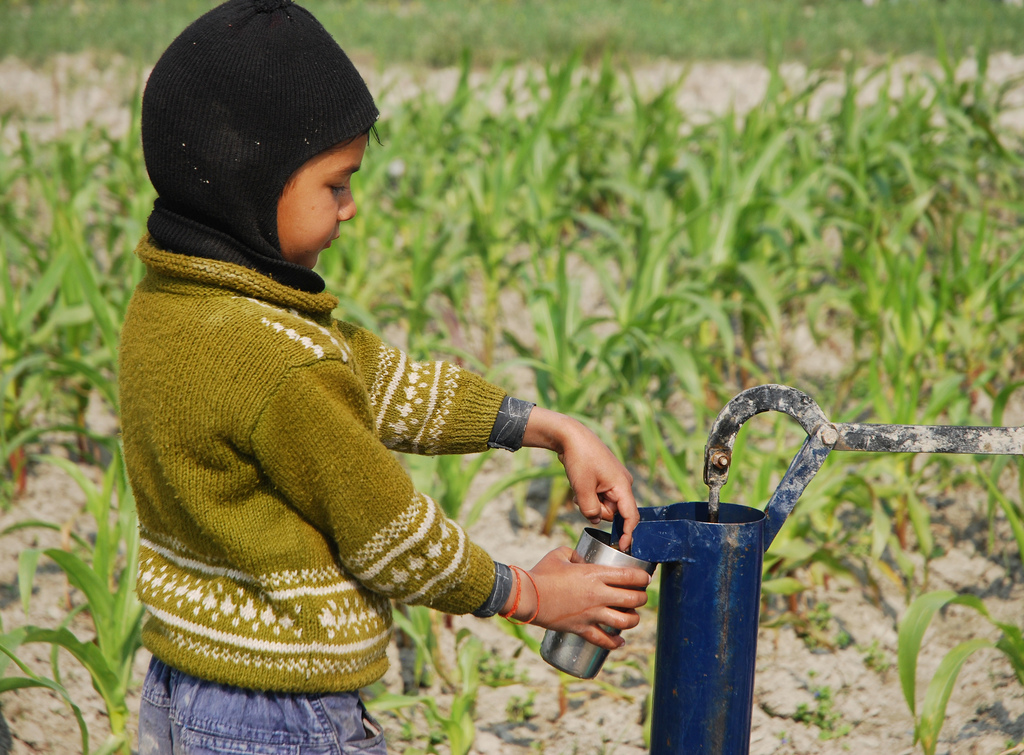 We're lending a hand in India to help improve their water quality. Image: M. DeFreese/CIMMYT.