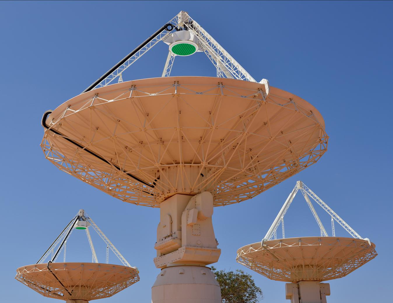 ASKAP telescopes in WA