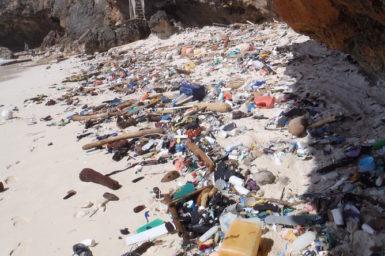 Marine debris on a beach