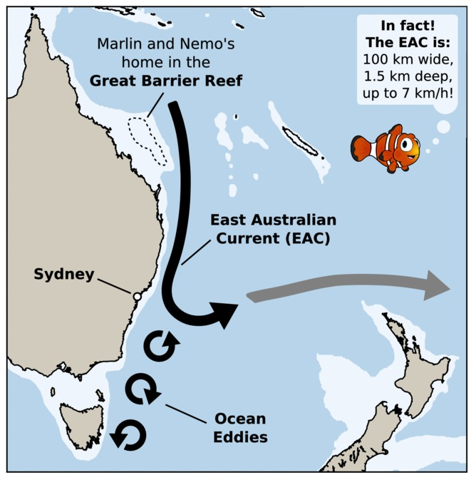 the eac starts at the great barrier reef and travels south to sydney before turning eastward