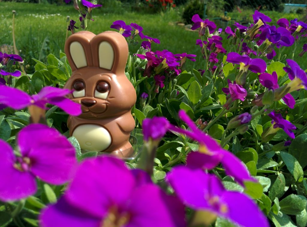 Get out and enjoy this Easter weekend. Image: Pixabay/ Engel62