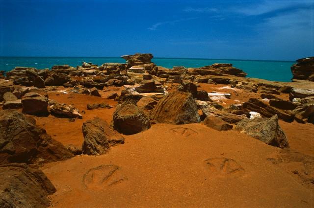 Dinosaur footprints in red sandstone