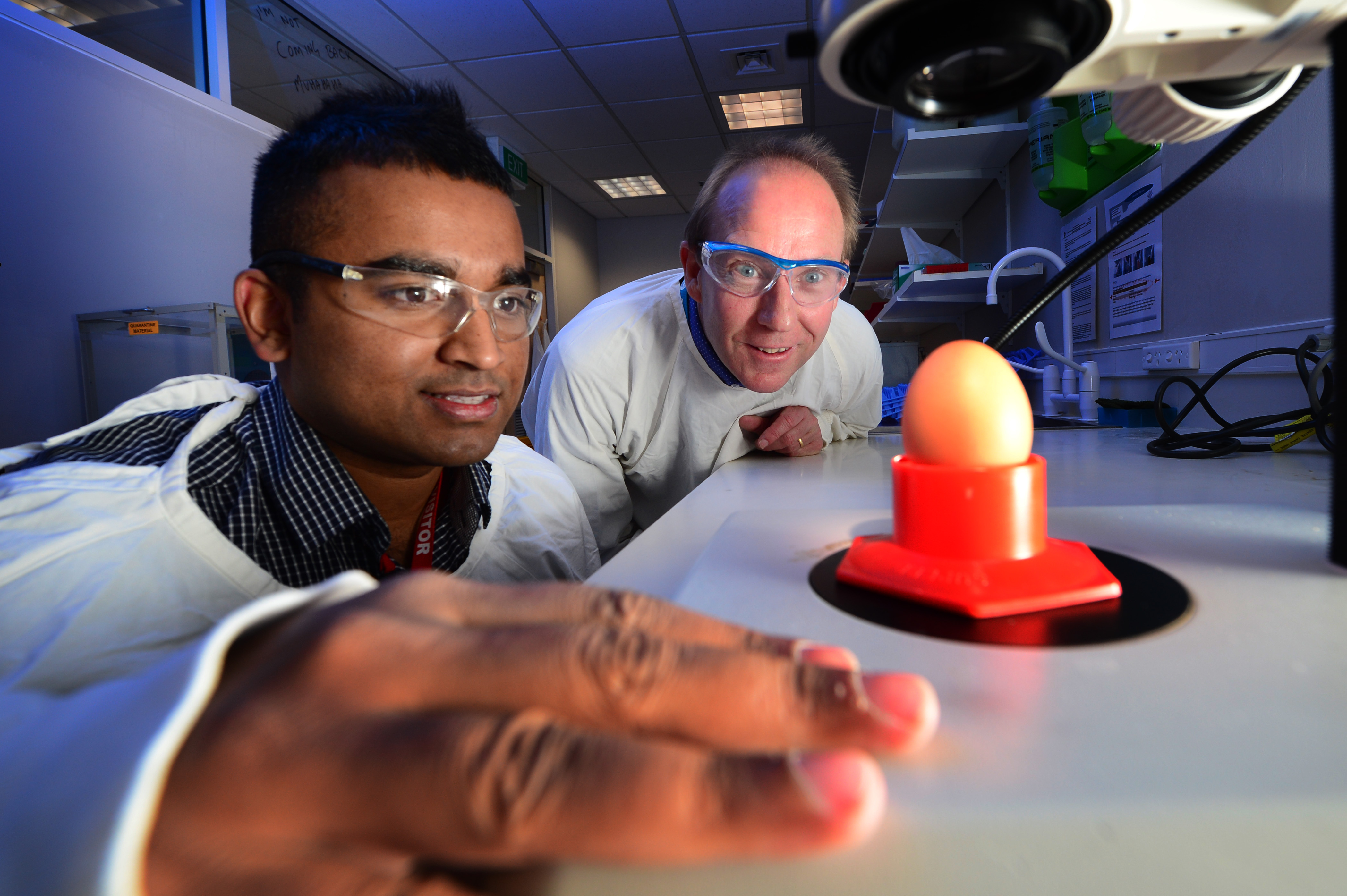 scientists with egg