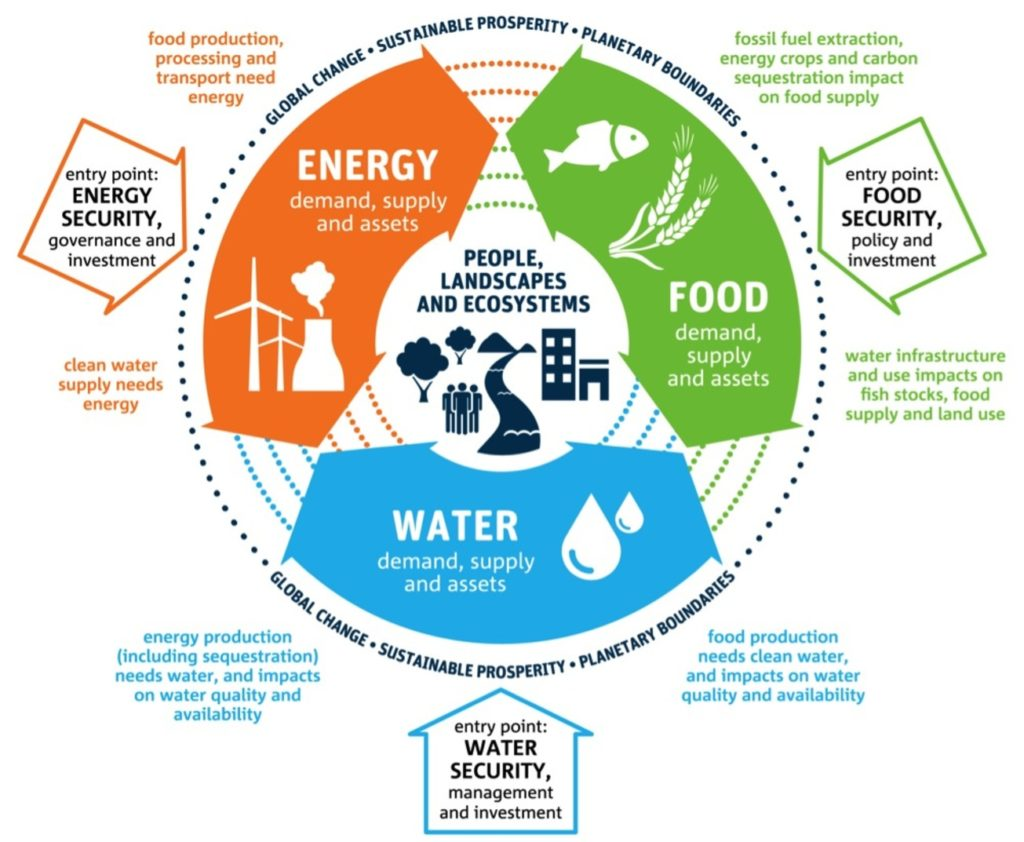Energy - food - water cycle infographic