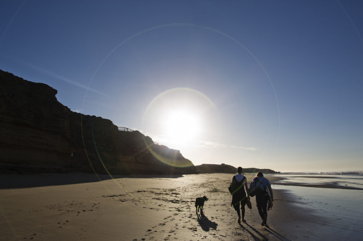 A couple with dog walking on beach