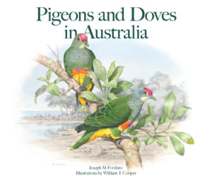 Front cover of pigeons and doves in Australia book