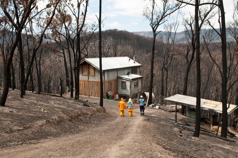 Picture of bushfire