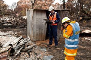 Picture of bushfire damage