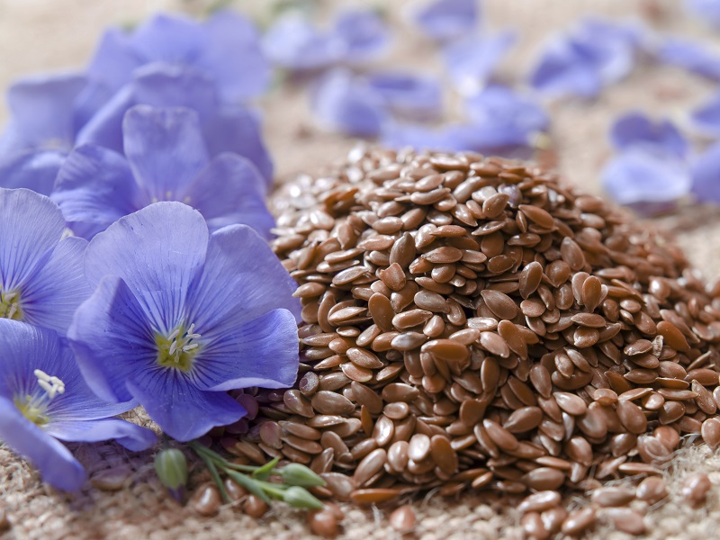 The humble flaxseed is a well known source of alpha-linolenic acid, an anti-microbial agent.