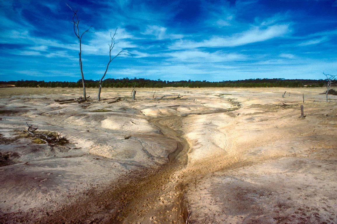 Australian drought landscape