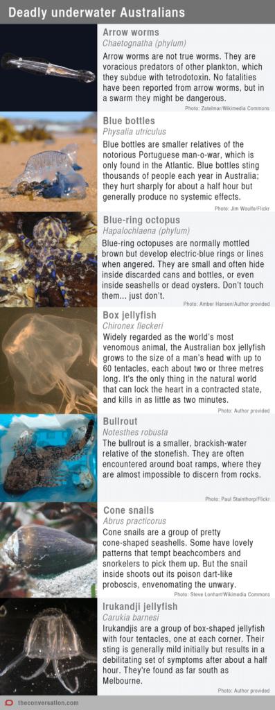 Deadly underwater australians