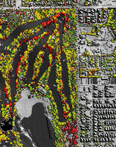 This image shows vegetation losses in red, growth in green and no change in yellow