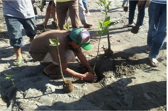 Planting mangroves in the Philippines to restore forests. Trees ForTheFuture/Flickr, CC BY
