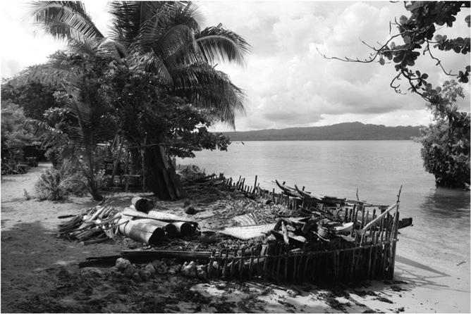 A seawall built using coral in Papua New Guinea J.E.M Watson