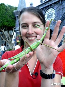 'The Bug Lady' can help you find out more about the insects living in your garden