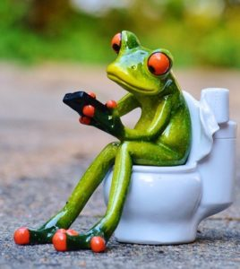 Picture of frog on toilet using phone.