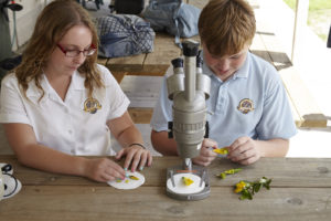 Two students are sitting at a table doing a classroom science experiment. The female student on the right is looking at the pollen of a plant on a circular white sheet of paper. The male student on the left has a microscope in front of him and he is prepping a plant to view under the microscope.