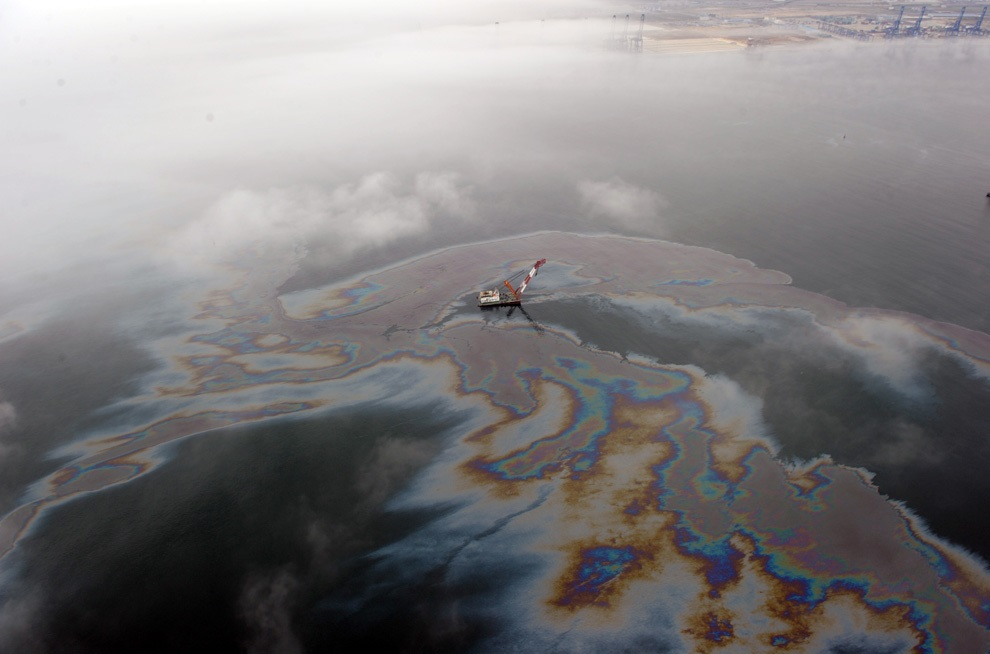 Oil spills have a devasting impact on land and marine ecosystems. Image credit - Peter Ma/Flickr