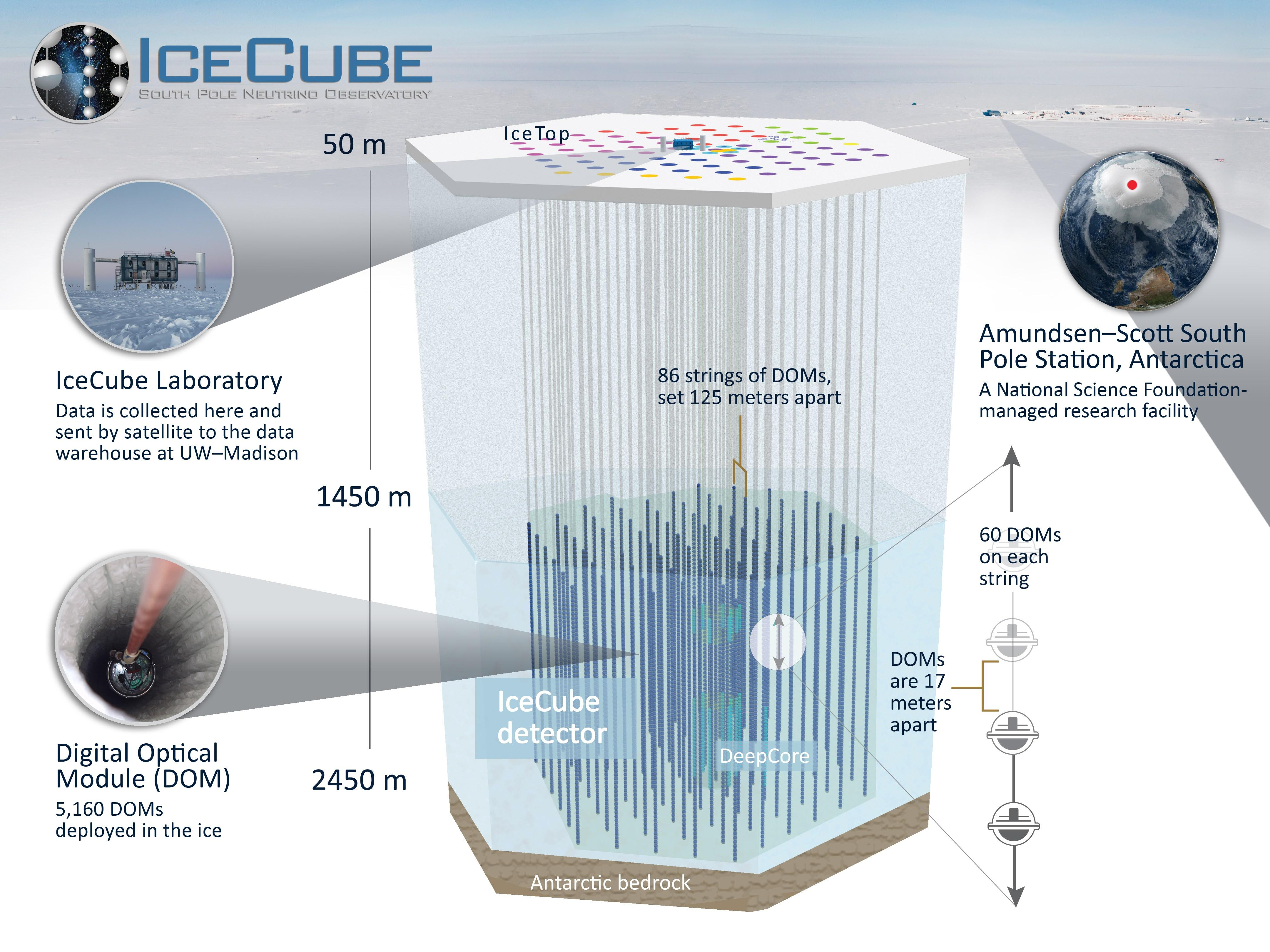 IceCube and the tale of the Big Bird neutrino - CSIROscopeIcecube Neutrino