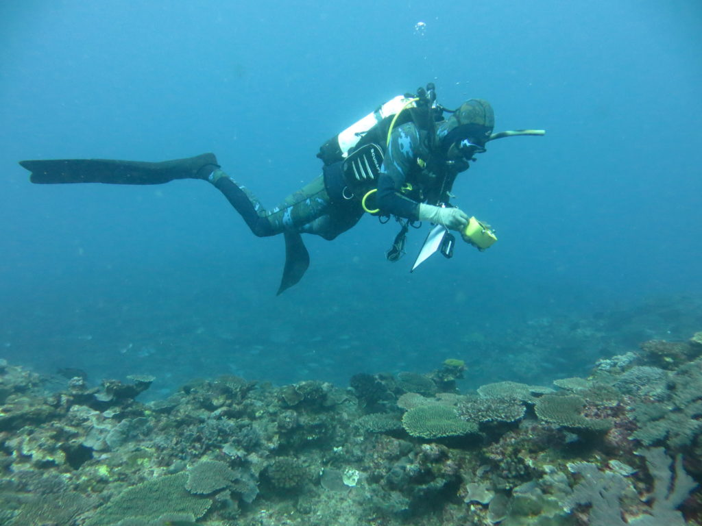 Our Research Scientists completing a survey to assess relative abundance of coral as part of the shallow reef research Image - Damian Thomson