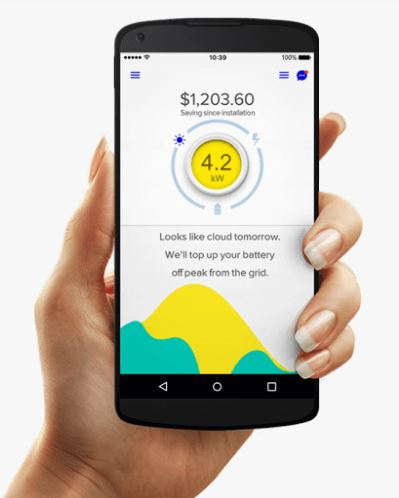 Evergen's app lets you easily see the money you're saving.