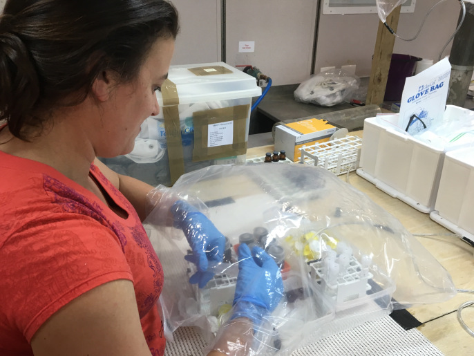 Core sample being processed using a glove bag (Image April Abbott)