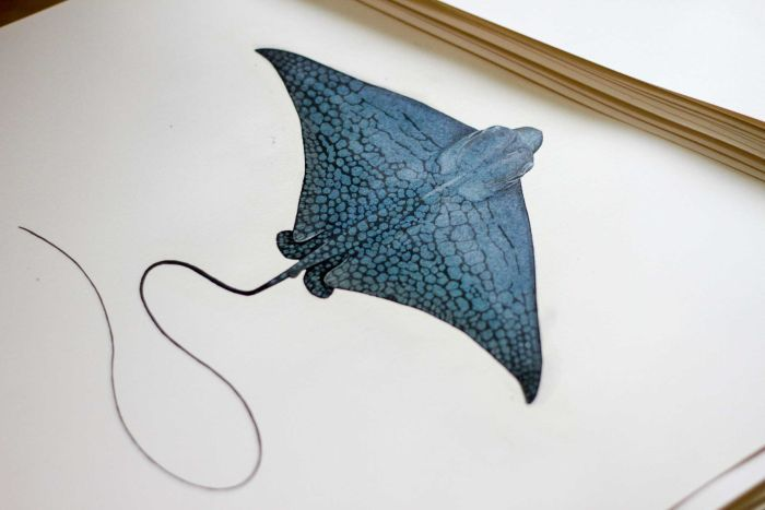 Illustration of a blue eagle ray