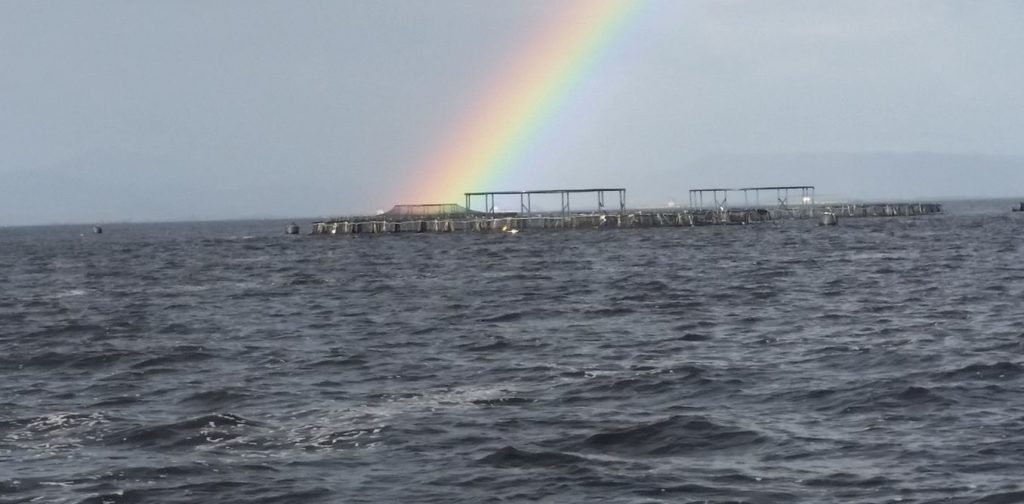 A pot of gold? Only if you're not complacent about the science. Adam Davey/University of Tasmania, Author provided.
