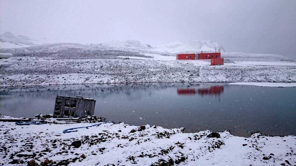 Pictured is King Sejong Station, located on King George Island, Antarctica, where Dr Tim Lynch has been monitoring penguins.