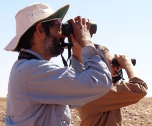 Dr Chris Pavey surveying for raptors.