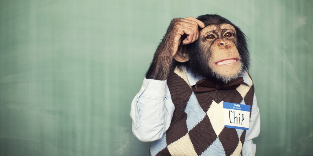 A chimp wearing a shirt and vest thinking
