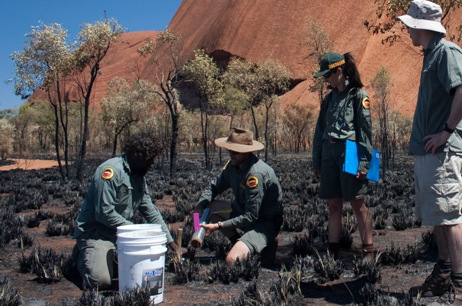 Four people taking soil samples with Uluru in the background.