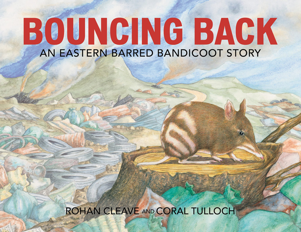 Bouncing Back book cover