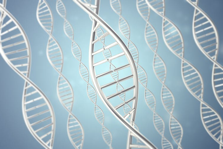 Imagine using synthetic DNA as a sensor recording device. Rost/Shutterstock