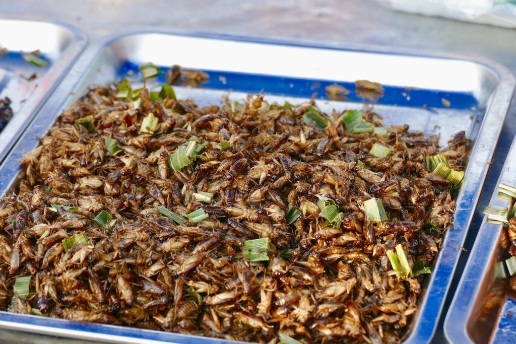 a tray of cooked insects