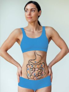 Model with diagram of stomach