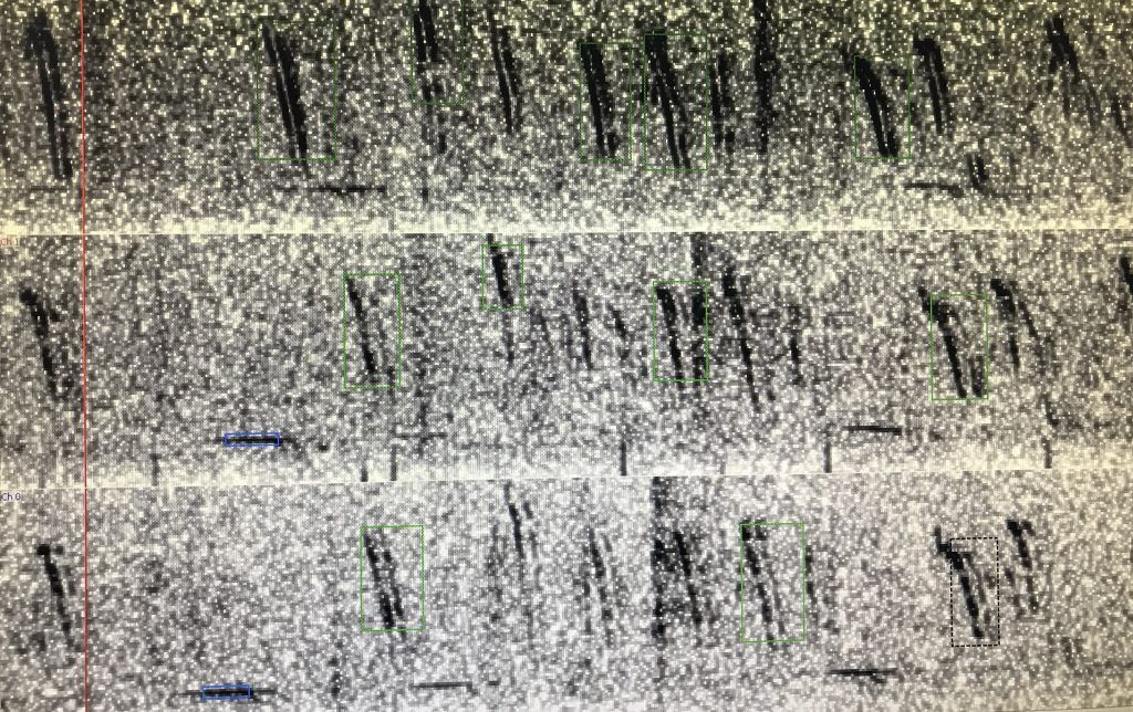 A spectrogram showing many Antarctic blue whale calls recorded on three sonobuoys