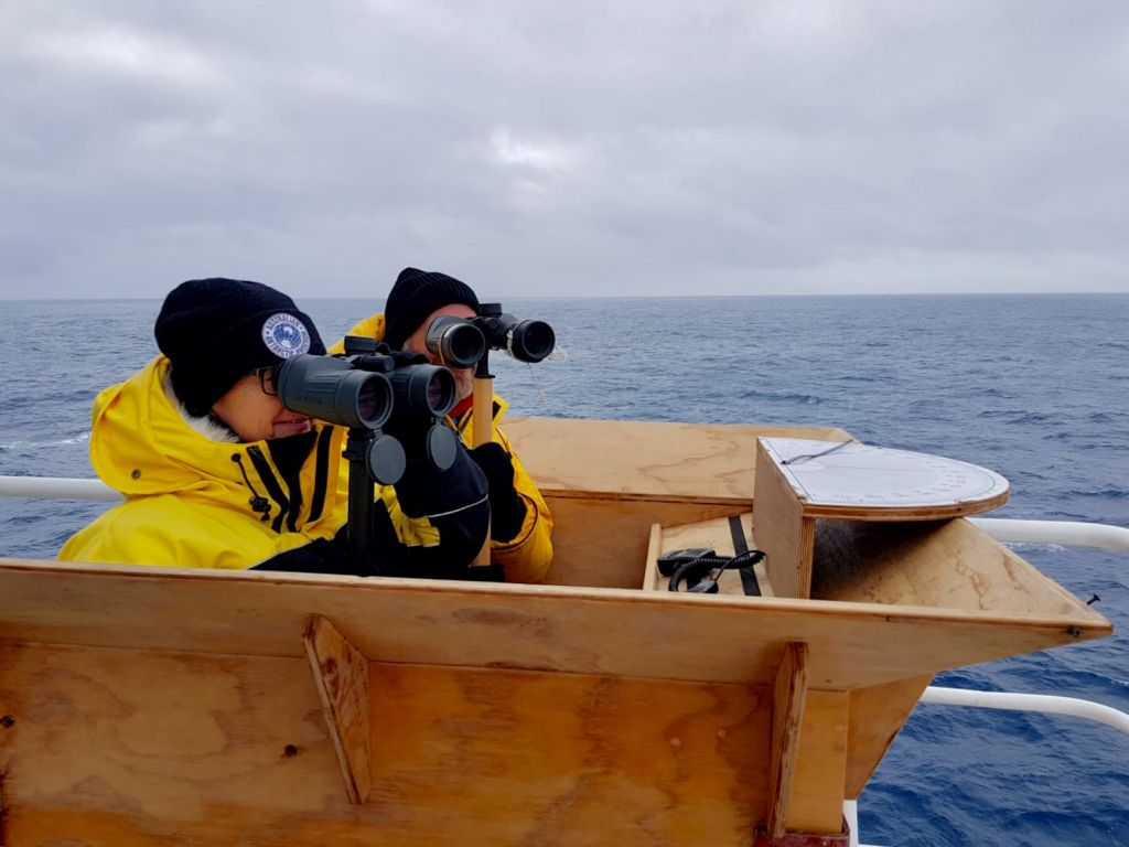 two researchers with binoculars whale watching on the ship