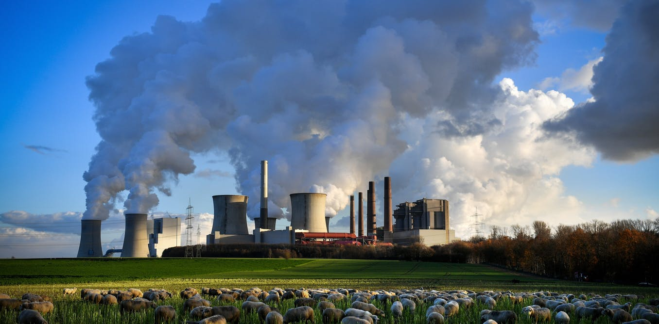 coal-fired power plant with steam coming out and sheep in foreground