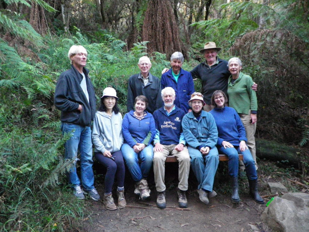A group photo of the FOSF volunteers in the forest